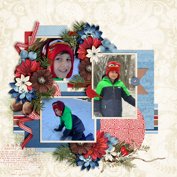 Snow-Days4