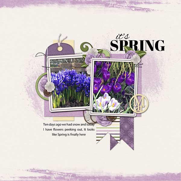 Spring-Flowers_web1