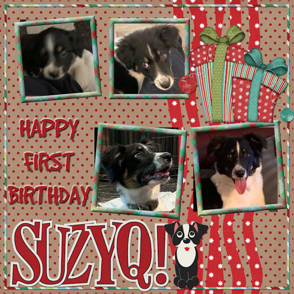 Happy Bday SuzyQ
