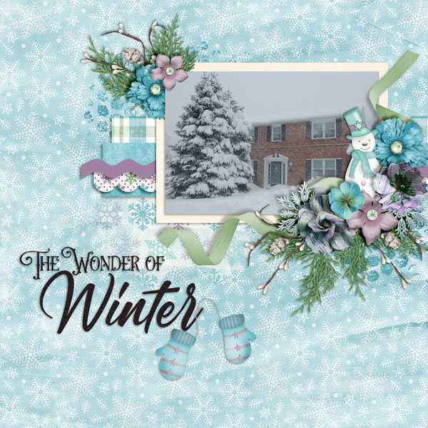 The-Wonder-Of-Winter1