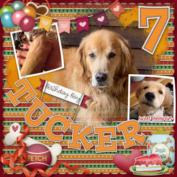 Happy Bday Tucker