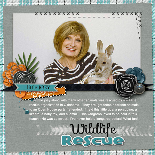 Wildlife Rescue - Page 1
