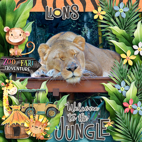 Zoo-fari
