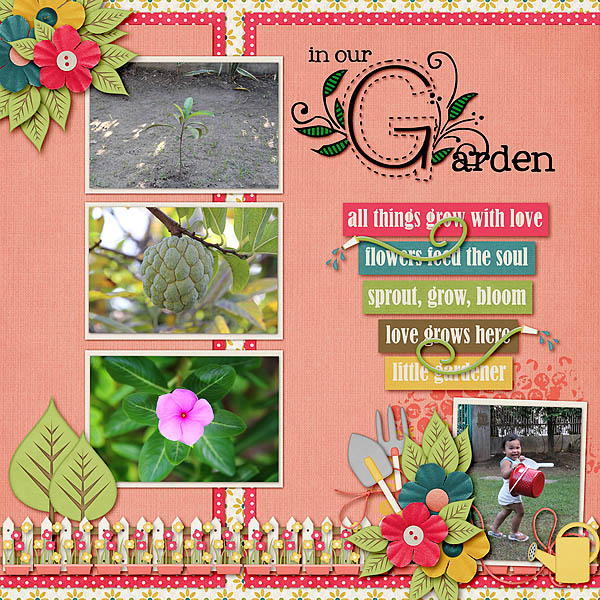 In Our Garden