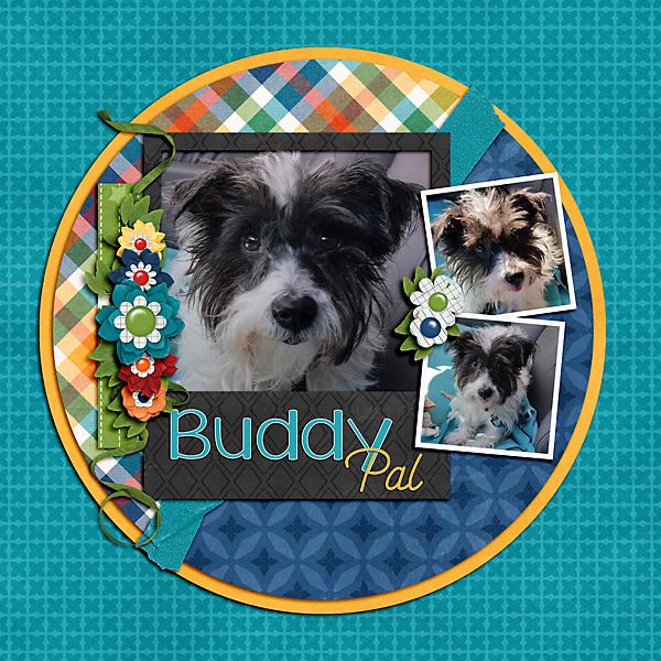 Buddy Pal