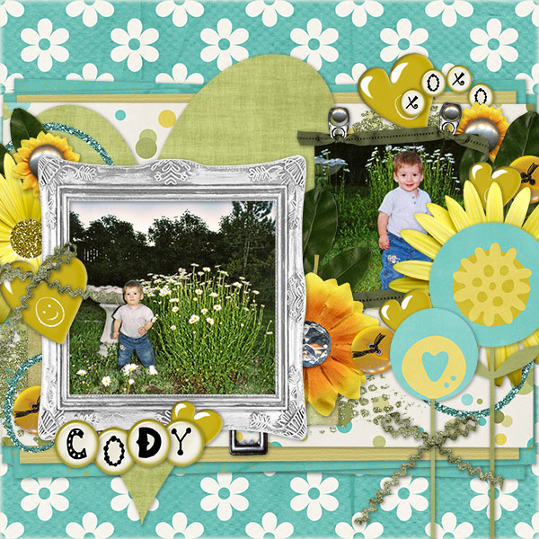 Cody in the Daisies