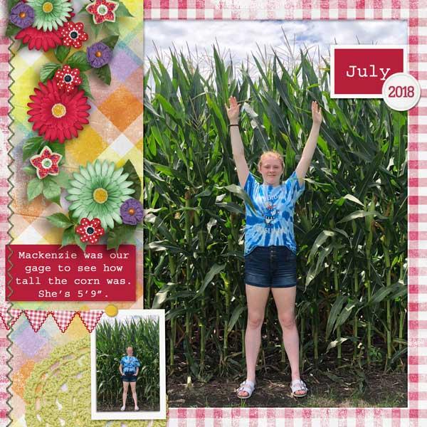 Iowa Corn - 2018