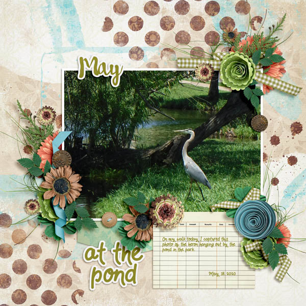 May at the Pond