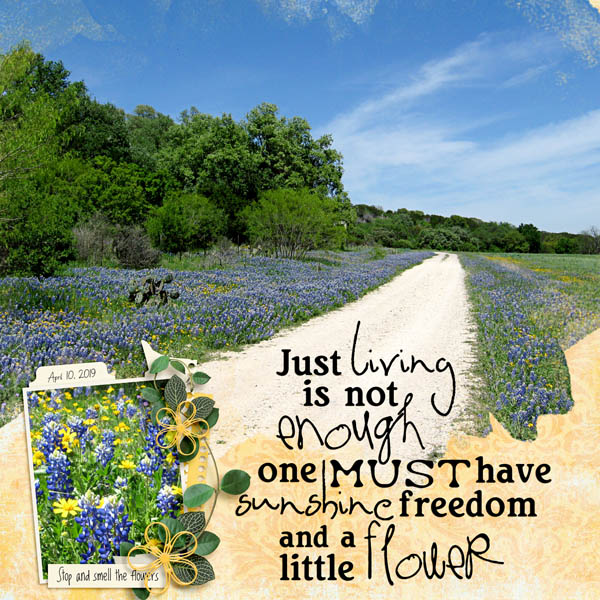 A Little Flower
