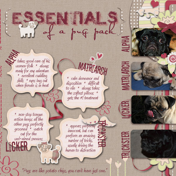 Puppy Love - essentials of a pug pack