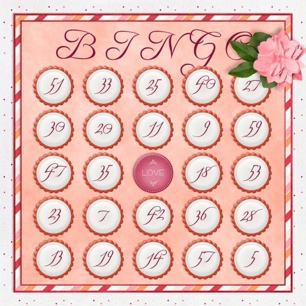 iNSD 2013 Bingo