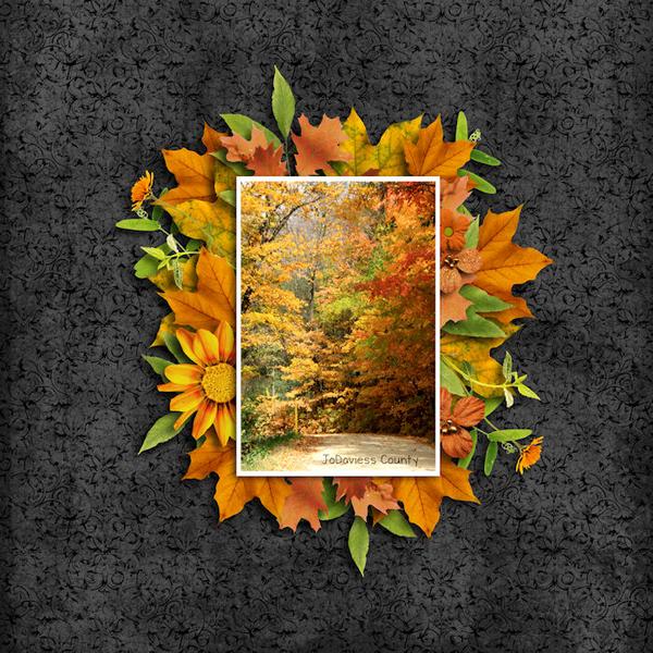 JoDaviess County Fall