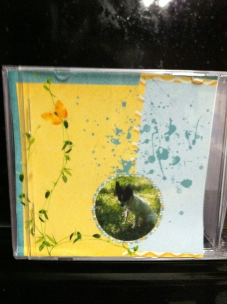 Recycled CD case