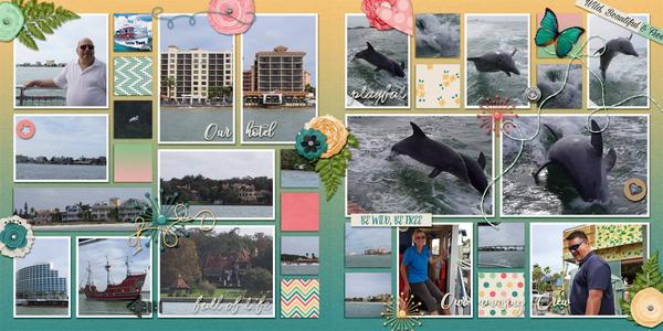 2015-12-24 Dolphins1-2 GiveMeAllThePhotos_Vol4-1