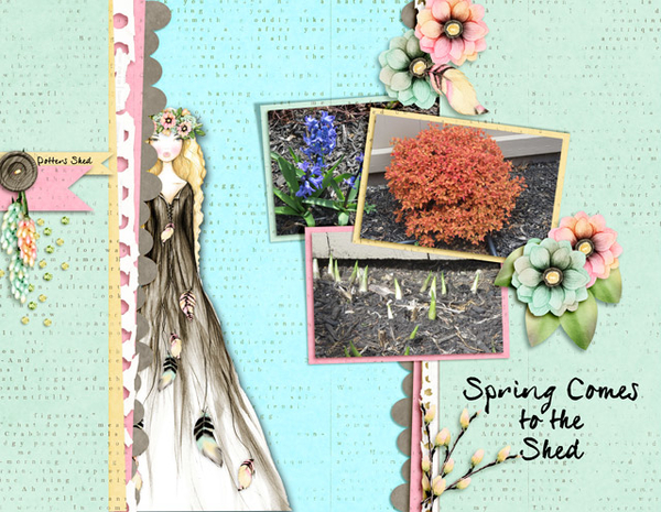 Spring Comes to the Shed