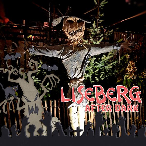 Liseberg after dark