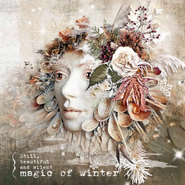 Winter's Beauties