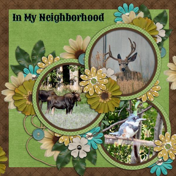 In My Neighborhood
