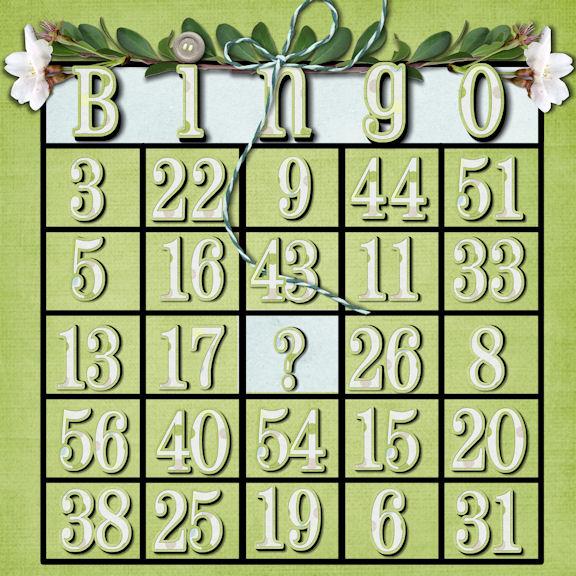Bingo nsd