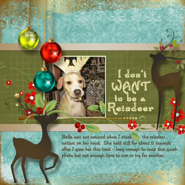 I Don't Want to be a Reindeer