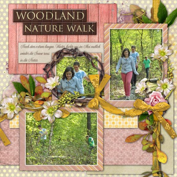 Woodland Nature Walk