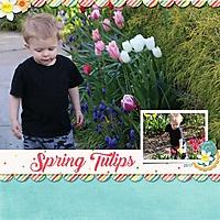 04_Cameron-tulips.jpg