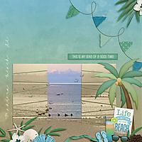 0508-Madiera-Beach-birds.jpg