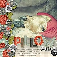 057-06-13-PillowPatrolByCFALBRO.jpg