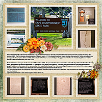 06-25-cape-d-MFish_BuildingBlocks6_02-copy.jpg
