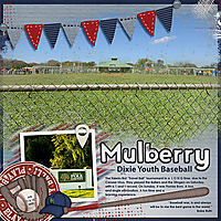 07-11-Mulberry-Dixie-Youth-Baseball-MFish_BlendedLandscapes1_02-copy.jpg