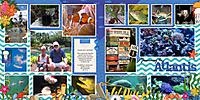 0703-Sea-World-under-the-sea-tm-ocean-world-DFD_MorePicturesToLove2-copy.jpg