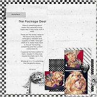 078-05-11-The_Package_Deal.jpg