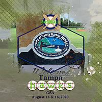 08-15-and-16-Safety-Harbor-MFish_AwashNo1_01-copy.jpg