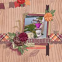 0801-lrt-tranquility.jpg