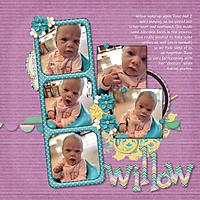 09_willow_talks.jpg