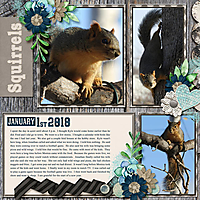 1-January_1_2018_small.jpg