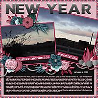 1-January_1_2020_small.jpg