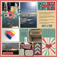 10-07-16-flying-home-Tinci_TIF1_1-copy.jpg