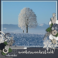 11_19_15_WINTER_WONDERLAND.jpg