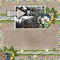 12-December_8_2017_small.jpg