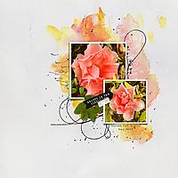 12x12-AZALEA---SIMPLICITY.jpg