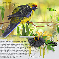 12x12-GREEN-ROSELLA---MOMENTS-OF-OUR-DAY.jpg