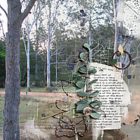 12x12-GUM-TREES---WRITE-IT-DOWN.jpg