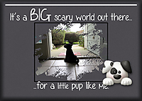 14-ATC-2020-005-It_s-a-Big-Scary-World.jpg