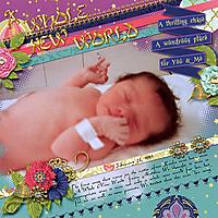 1993-02_sts-MayMedley3_MSG-AMCR_web.jpg