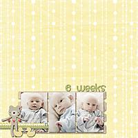 1_month_-_6_weeks.jpg