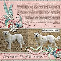 2-February_14_2020_small.jpg