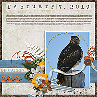 2-February_7_2019_small.jpg