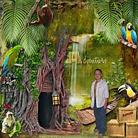 2008_md_Rainforest.jpg