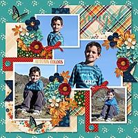 2009-10_-_tinci_-_september_favorites_1_-_KCB-flannel_season.jpg